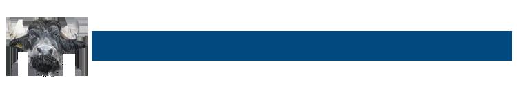 Buffelboerderij Arns Zevenaar logo